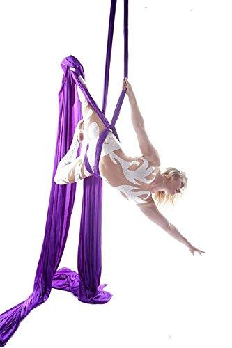 10 Meter Yoga DIY Équipement Aerial Silks Yoga Anti-gravité Hamac-Yoga Équipements de Danse Aérienne Yoga Balançoire Tissu Stretch Durable Seuls les tissus sans accessoires (Violet, 10)