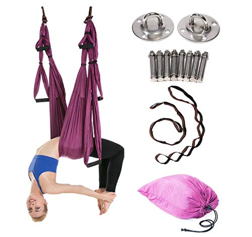JIALFA Hamac de Yoga Aérien Kits, Balançoire de Yoga en pour Le Yoga Anti-gravité, Exercices d'inversion, flexibilité améliorée et Force de Base - Accessoires de Montage Inclus (Violet foncé)