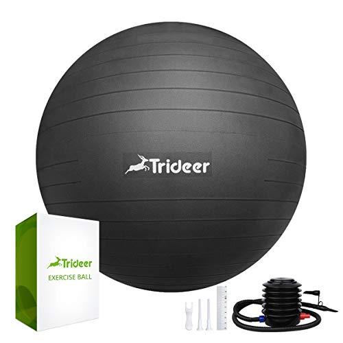 Trideer 45 cm à 85 cm Ballon Suisse de Gym avec Pompe, 500KG Anti-Eclatement/différentes Couleurs Ballon de Gymnastique (Noir, 65cm)