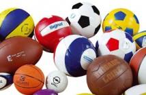 ballon-en-ligne-sportoza-equipement-et-materiel-sport