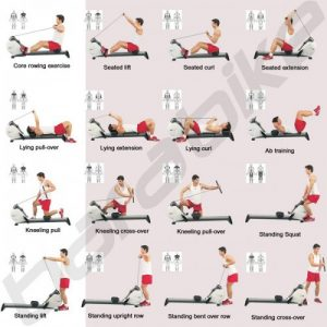 16-exercices-rameur-entrainement