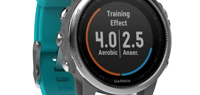 sportoza sport equipement montre garmin 5S Fenix